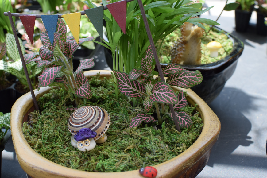 Several tents sold ready-made miniature fairy gardens and small decorations with which to customize them.