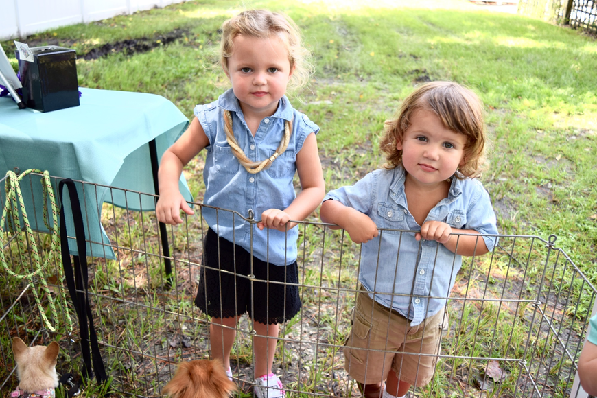 Reese and Dillard Claflin loved petting the dogs.