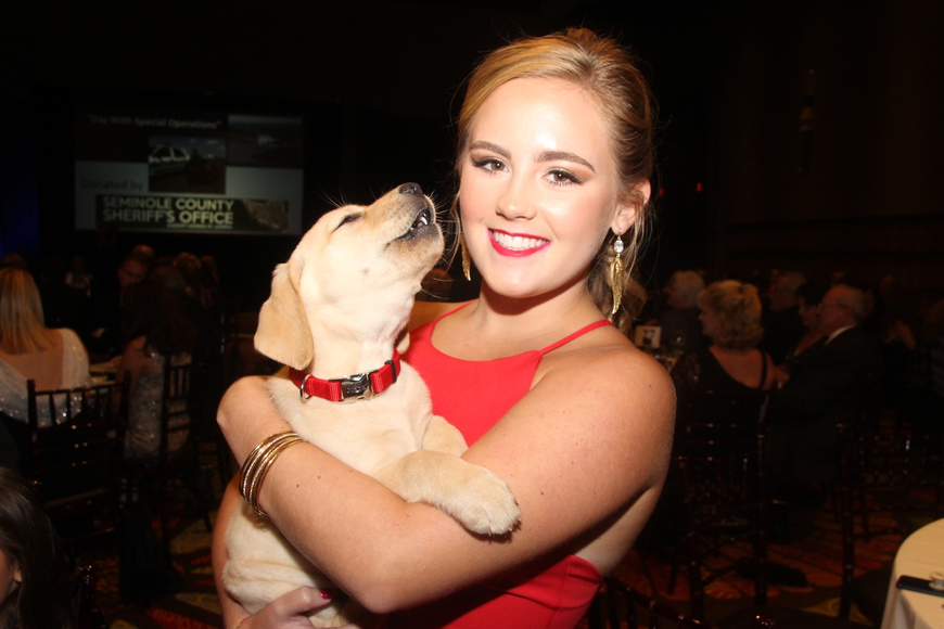 The Patriot Gala even had a yellow lab puppy up for auction.
