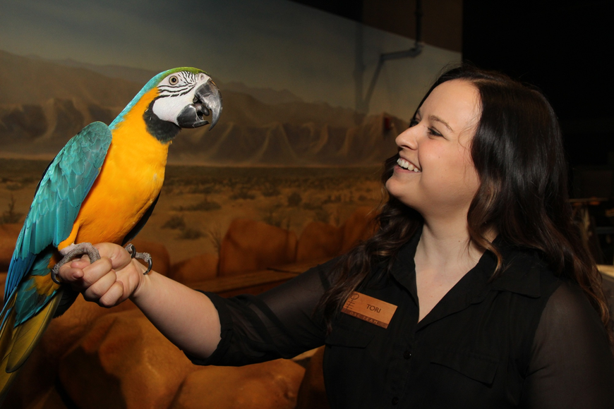 Captain the Macaw and Tori Wingerter