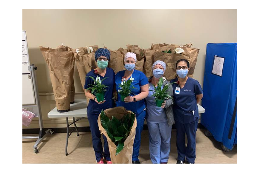 AdventHealth nurses received beautiful peace lilies.